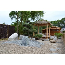 PIERRE A GABION BLUE BERRY 60/90mm